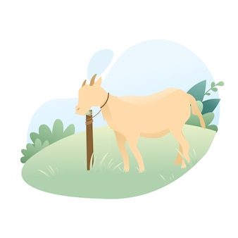 Cute goat cartoon illustration to celebrate eid al adha