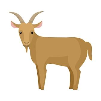 귀여운 염소 흰색 배경에 고립입니다. 재미있는 만화 캐릭터 농장 갈색 색상입니다. 모든 목적을 위한 평평한 동물 디자인. 벡터 일러스트 레이 션.