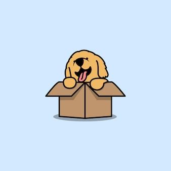 Cute golden retriever puppy in the box cartoon icon