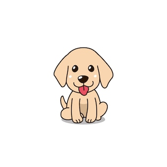 Cute golden retriever puppy dog