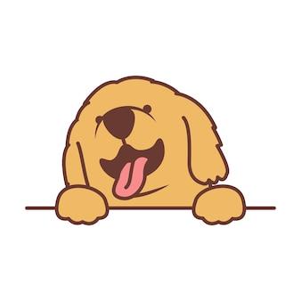 Cute golden retriever puppy paws up over wall