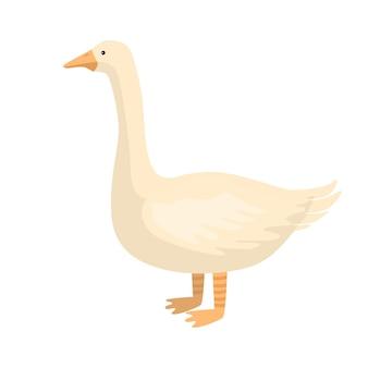 Милый гусь, изолированные на белом фоне. забавный мультяшный персонаж фермы белого цвета. плоская птица для дизайна любых целей. векторная иллюстрация.