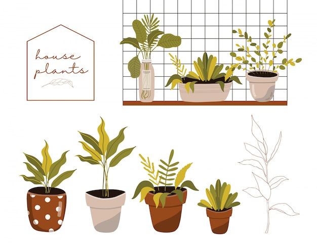 Cute graphic collection with house plants in pots.