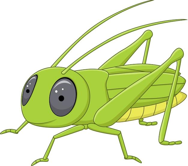 귀여운 메뚜기 포즈 흰색 배경에 고립