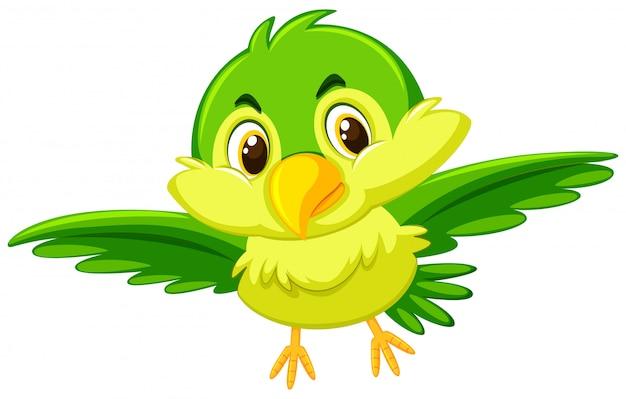 A Cute Green Bird Premium Vector