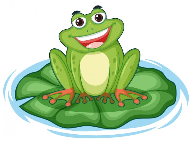Cute green frog on lotus leaf