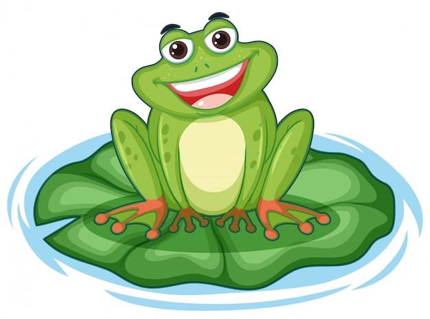 Милая зеленая лягушка на листе лотоса