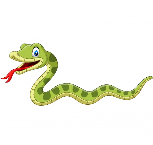 Cute green snake cartoon isolated