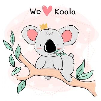 Cute grey koala eat leave on branch tree