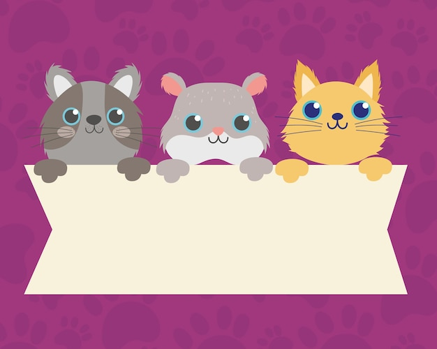Cute hamster and cats with empty banner vector illustration