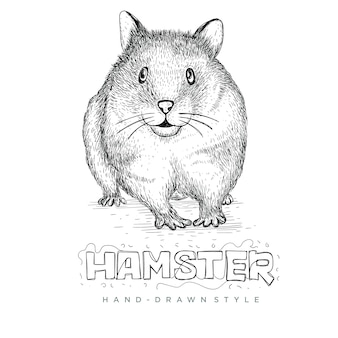 Cute hamster with hand drawn style, realistic animal illustrations