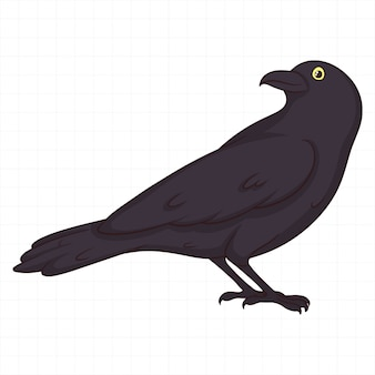 Cute hand drawn crow