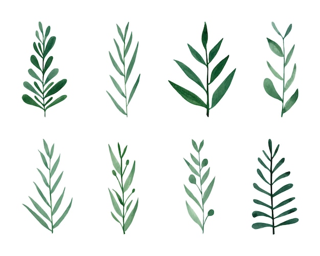 かわいい手描きの森の葉と枝セット水彩イラストの葉