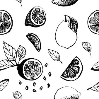 메뉴 또는 레시피를 위해 잎과 씨앗이 있는 레몬 조각으로 귀여운 손으로 그린 패턴