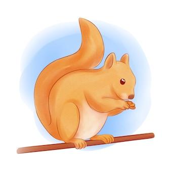 Cute hand drawn squirrel illustration