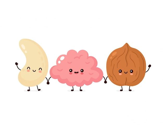 귀여운 행복 뇌, 캐슈, 호두 견과류.