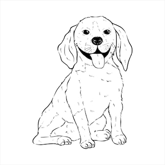 Cute happy corgi dog expression with hand draw or sketch style