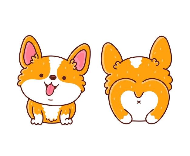Симпатичная счастливая собака корги спереди и сзади