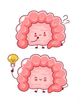 Cute happy funny human intestine organ with question mark and idea lightbulb.