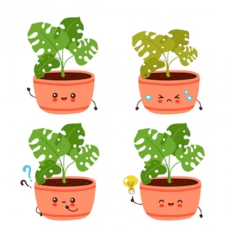 Cute happy funny monstera plant in pot set collection.