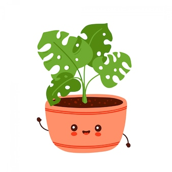 Cute happy funny monstera plant in pot. vector cartoon character illustration design.isolated