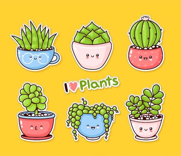 Cute happy funny succulents plants set collection.