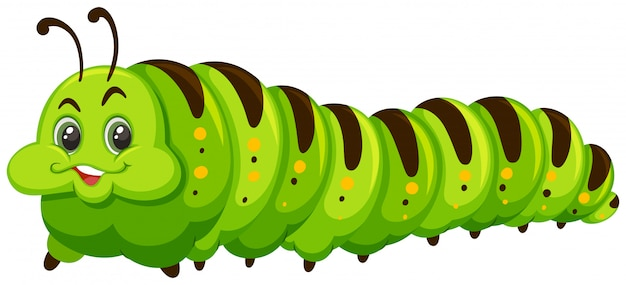 かわいい幸せな緑のcatapillar