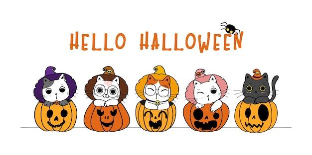 Cute happy halloween banner funny kitten cat costume in craved pumpkin cartoon flat vector