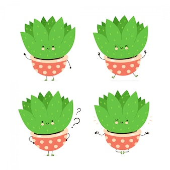 Cute happy plant in pot character set collection. isolated on white . vector cartoon character illustration design, simple flat style. succulent plant walk,train,think,meditate concept