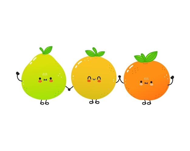 Милый счастливый помело грейпфрут и мандарин