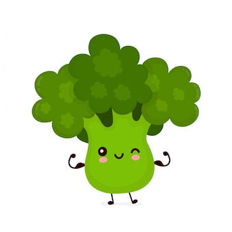Cute happy smiling broccoli vegetable show muscle. cartoon character.