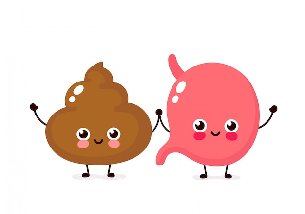 Cute happy smiling stomach and poop character. vector flat cartoon illustration  design. isolated on white . stomach and shit friends character concept