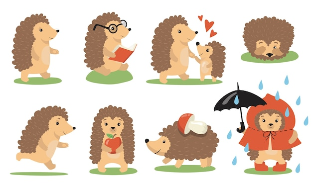 Set di azioni e pose carino riccio. animale selvatico del fumetto che cammina sotto la pioggia, legge, gioca con il bambino, dorme, corre, trasporta cibo. illustrazione vettoriale per la fauna selvatica, la natura