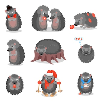 Cute hedgehogs set, sweet gray animals cartoon characters in different situations  illustration on a white background