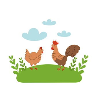 かわいい鶏とオンドリが牧草地に立っています。漫画の家畜、農業、素朴。青い雲と緑の草と白い背景の上の単純なベクトルフラットイラスト。