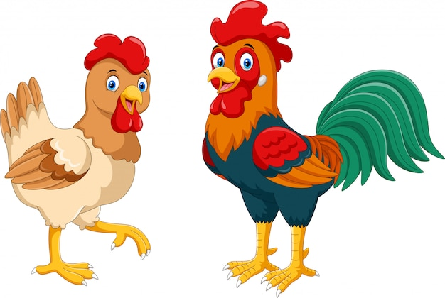 Cute hen and rooster cartoon