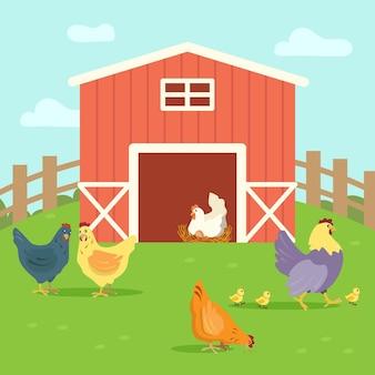 Милые куры с цыплятами гуляют по двору фермы