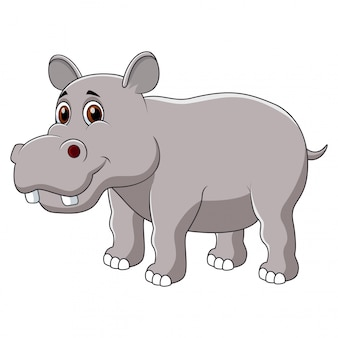 Cute hippo cartoon isolated