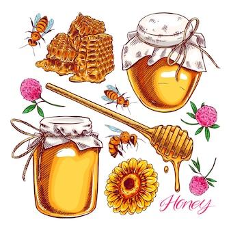かわいいハニーセット。蜂蜜、ミツバチ、ハニカムの瓶。手描きイラスト