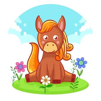 Cute horse sitting on a flower meadow.