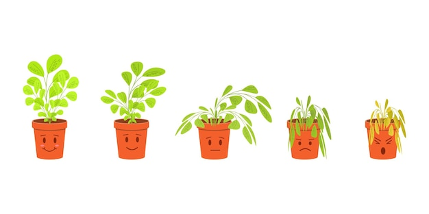 Cute houseplant characters in the pots blossoming and dying without care phases of plant withering