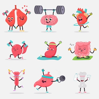 Cute human internal organ doing yoga and fitness exercises isolated