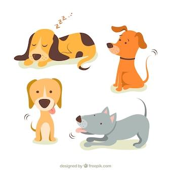 Cute illustrations of dogs Premium Vector