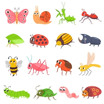 Cute insect set cartoon bug beetle butterfly worm funny snail and ant