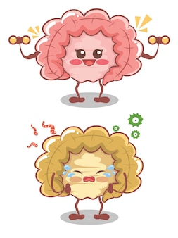Cute intestine heathy and unhealthy lifestyle. cartoon
