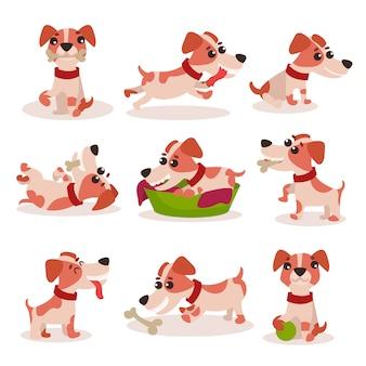 かわいいジャックラッセルテリアのキャラクターセット、さまざまなポーズや状況のイラストで面白い犬