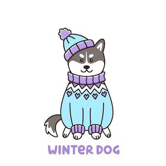 Милая собака кавайи породы сибирский хаски в исландском свитере и шляпе