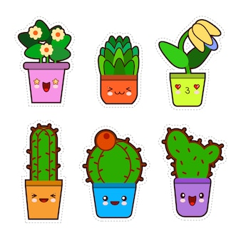Cute kawaii houseplants collection