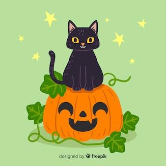 Cute kitten sitting on a pumpkin