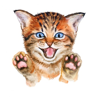Cute kitten with raised paws. watercolor